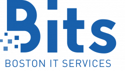 Boston IT Services Inc company logo