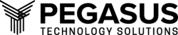 Pegasus Technology Solutions company logo